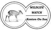 Wildlife Watch Quiz