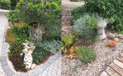 Open gardens in Kenton